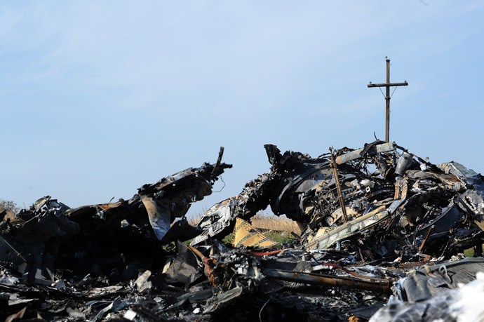 Wreckage of Malaysia Airlines flight MH17 near the village of Rassipnoe. (AFP Photo / Dominique Faget)