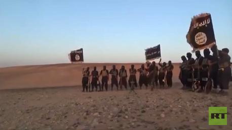 Des combattants de l'Etat islamique