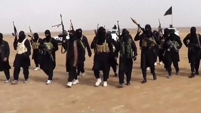 Des combatants de l'EI le 11 Juin 2014 près de Ninive en Irak