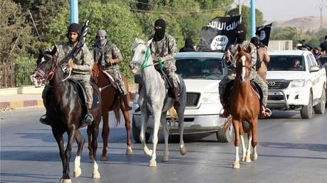 Paradis perdu : Al-Qaïda prive les combattants de Daesh des cieux islamiques