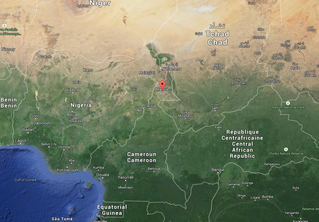 Un double attentat fait 13 victimes au Cameroun (IMAGES PERTURBANTES)