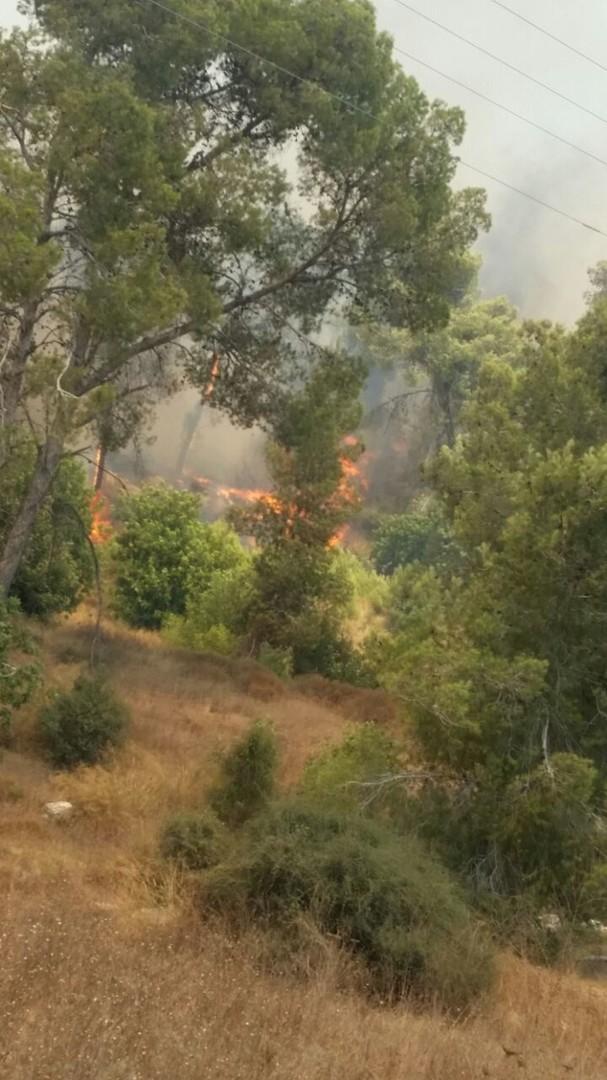 Immenses feux de forêt près de Jérusalem