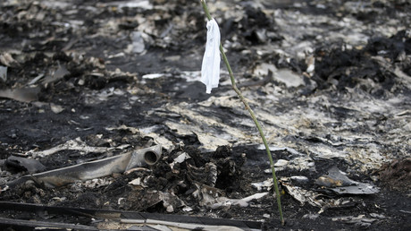 Crash du MH17 : «la vérité sera établie, mais trop tard»