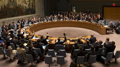 Les membres du Conseil de sécurité votent pendant une séance le 20 juillet