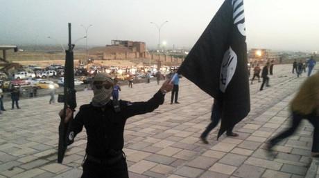 Selon la brochure, Daesh serait un véritable paradis