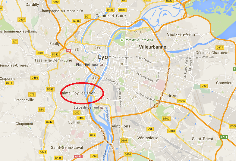 Lyon : l'homme blessé par la police en forçant un barrage a succombé à ses blessures à l'hôpital