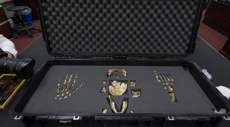 Des os d'Homo Naledi