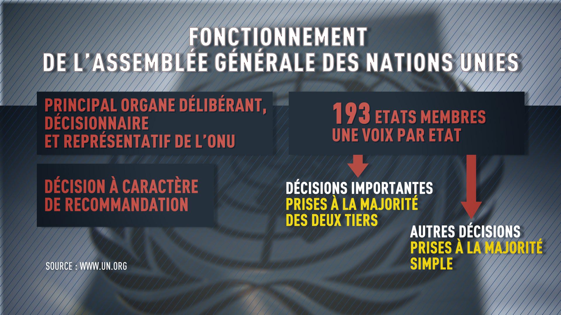 Assemblée générale de l'ONU : comment ça marche ?