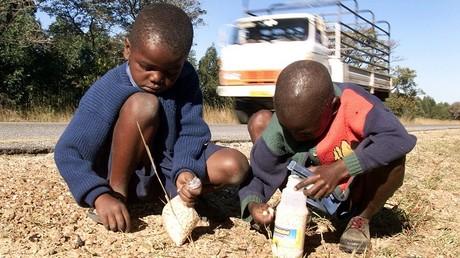 Au Zimbabwe, les écoliers se servent de leurs céréales du matin pour fabriquer de la bière