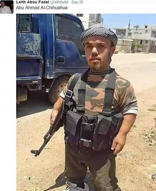 Syrie : un djihadiste nain gagne le surnom de Abu Ahmad al-Chihuahua !