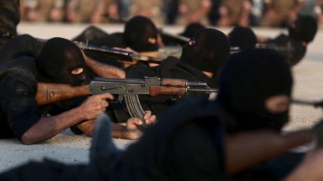 Des rebelles anti-Assad