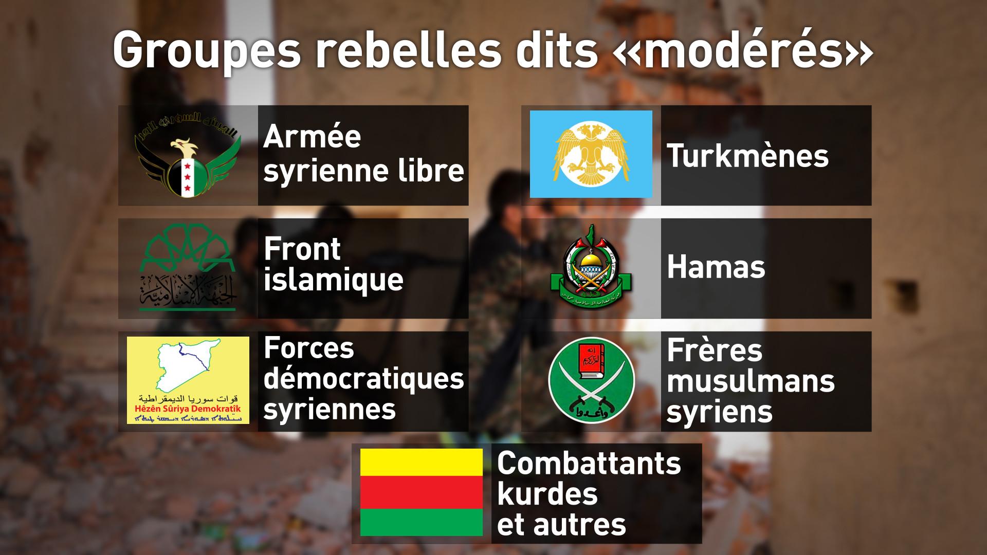 Quelles sont les forces non gouvernementales à se battre en Syrie?