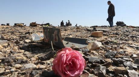 Le site du crash en Egypte