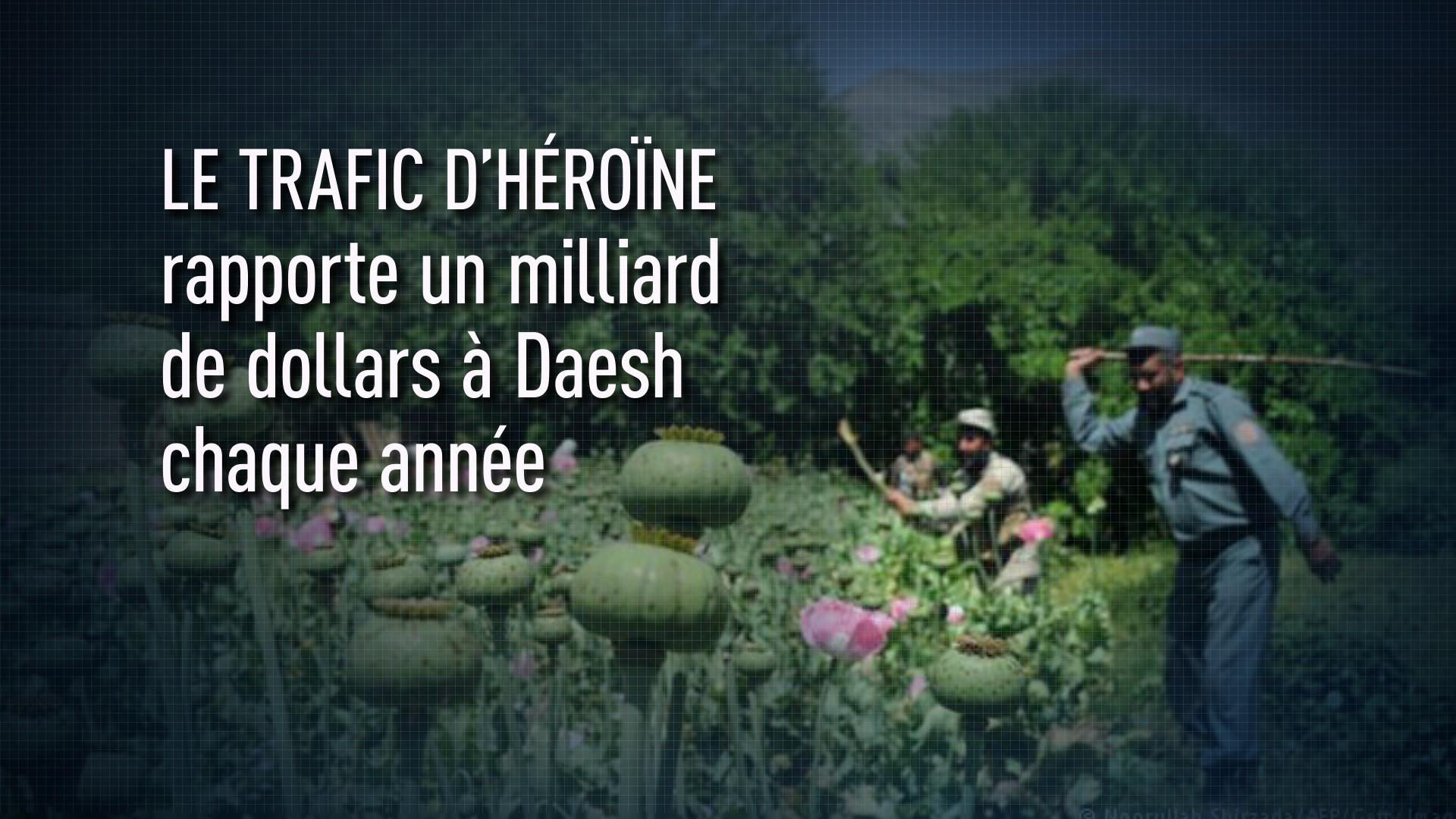 L'héroïne afghane rapporte à Daesh un milliard de dollars par an