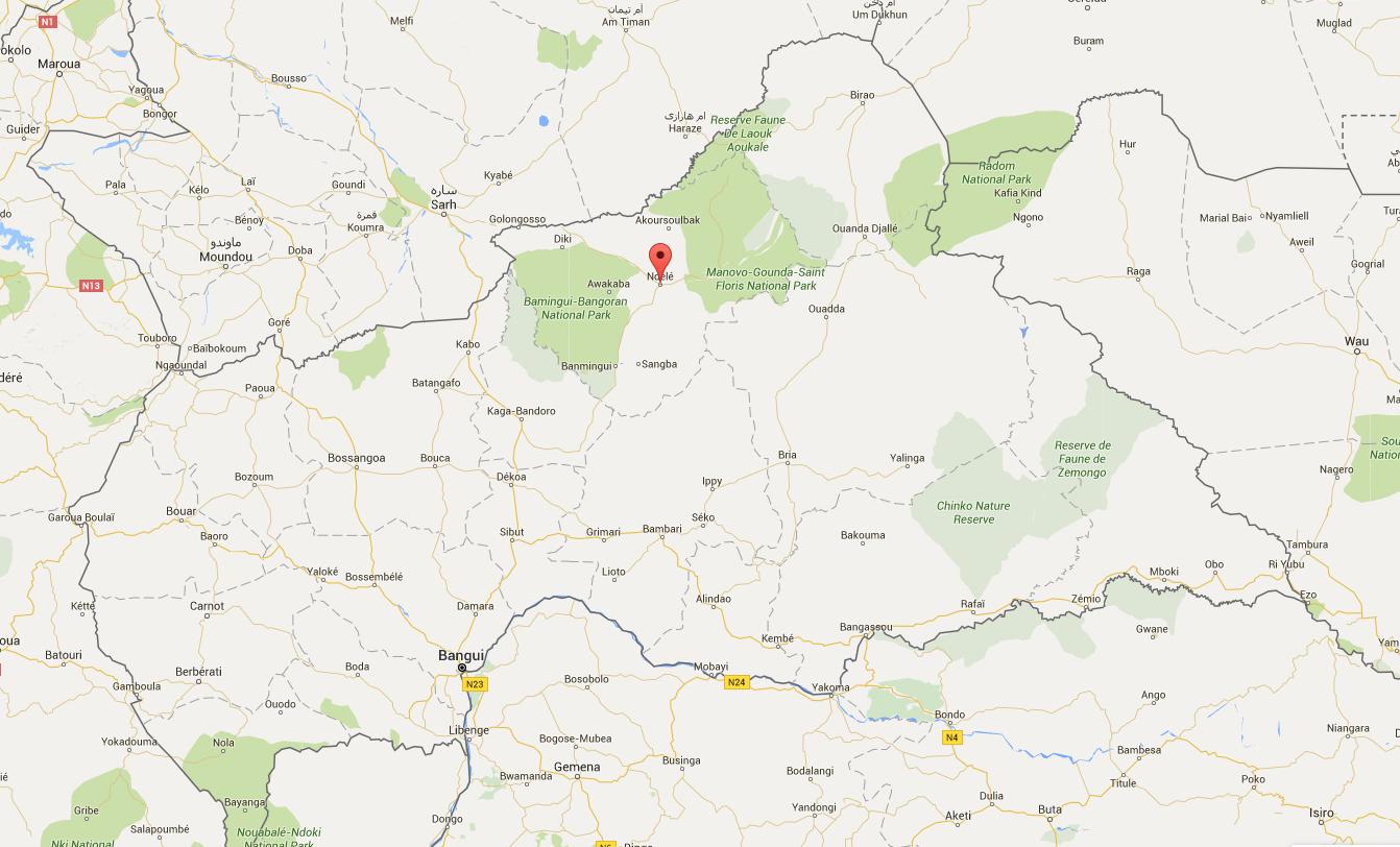 Le drapeau rebelle a été hissé dans la ville de N'Délé au nord de la Centrafrique (Source : Google Map)