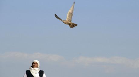 26 Qataris, dont certains membres de la famille au pouvoir, enlevés lors d'une chasse au faucon