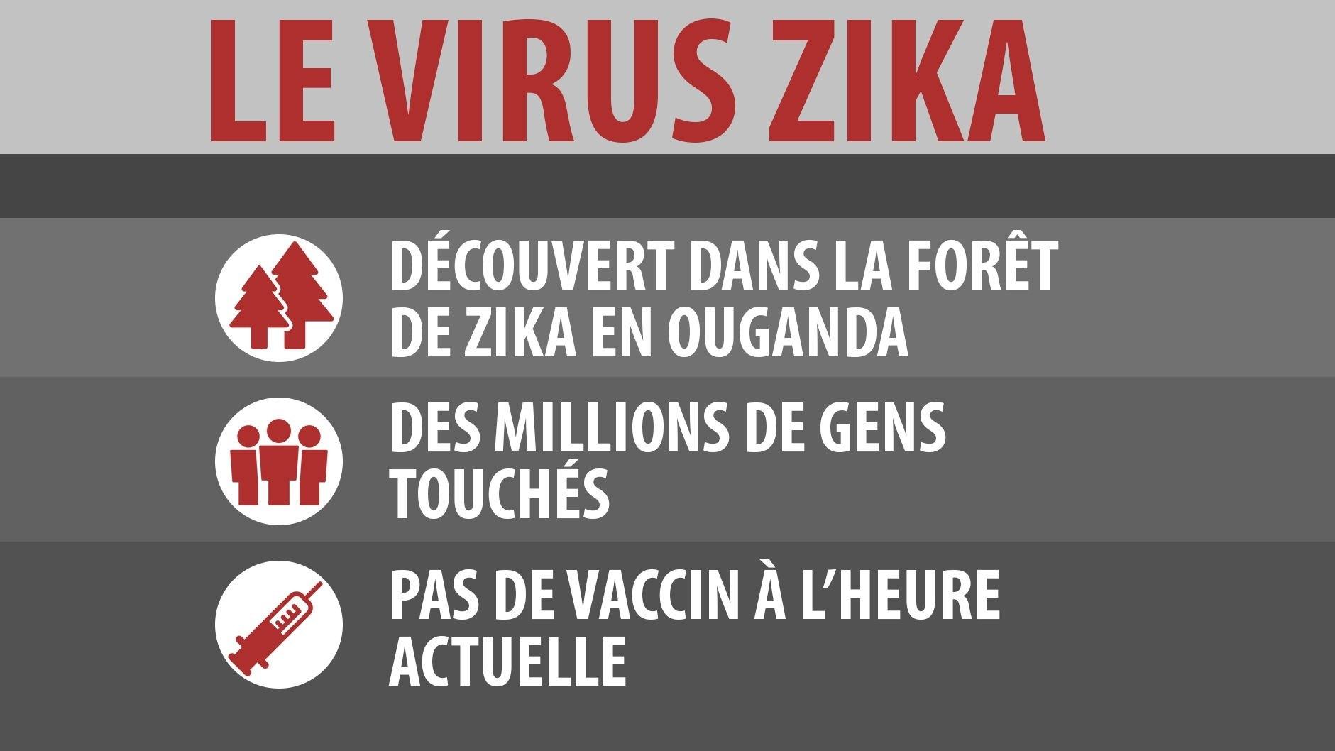 Le virus Zika.