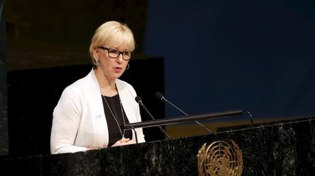 Margot Walltröm n'en est pas à sa première déclaration contre Israël.