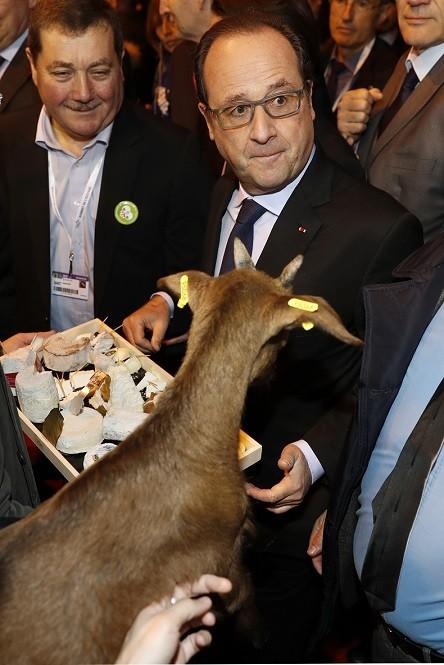 En pleine crise, François Hollande sous le feu des agriculteurs en colère au Salon de Paris (VIDEO)