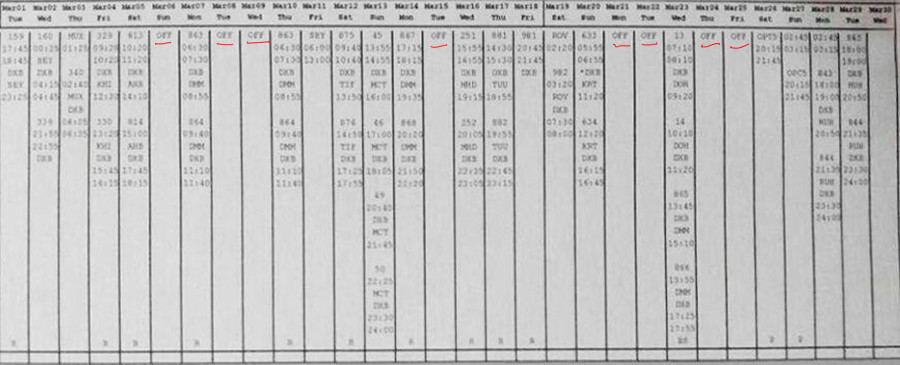 Le carnet du vol du copilote du vol FZ981, Alejandro Cruz Alava.