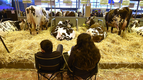 Salon de l'agriculture à Paris