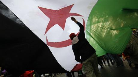 Sahara occidental : «Le Maghreb est l'otage de ce conflit»