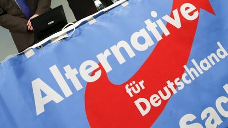 Allemagne: le parti AfD veut une zone euro sans la France