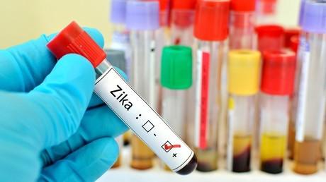 Vol en plein jour : un savant brésilien a perdu toutes ses recherches pour lutter contre Zika