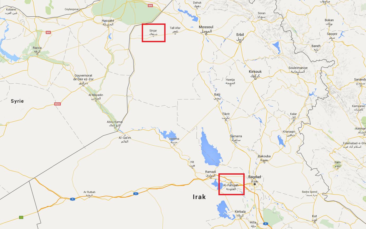 Irak : 354 femmes yézidies libérées des griffes de Daesh à Falloujah