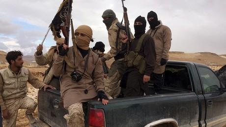Les membres du groupe terroriste Front al-Nosra