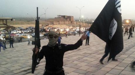 Daesh appelle à étendre le combat dans le sud-est asiatique