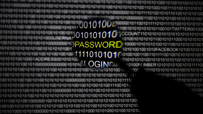 RT France s'est intéressé aux groupes de hackers les plus célèbres du monde