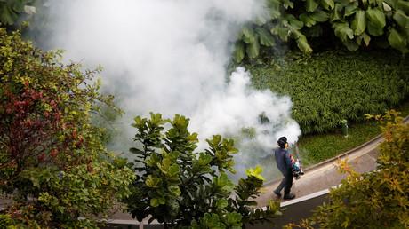 Zika : après la 41e contamination à Singapour, les autorités tentent d'éradiquer les moustiques