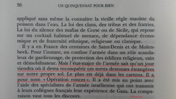 Eric Zemmour : «L'armée française va reconquérir les banlieues comme Israël l'a fait à Gaza»