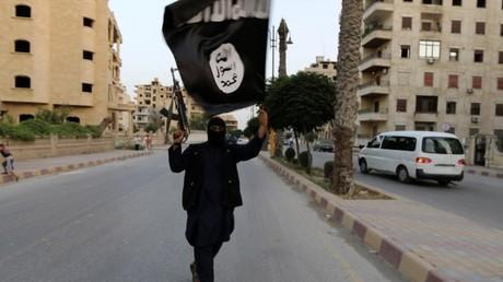 Un terroriste de l'Etat islamique (Archive)