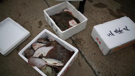 Le Japon pourrait autoriser la vente de poisson plat pêché près de Fukushima