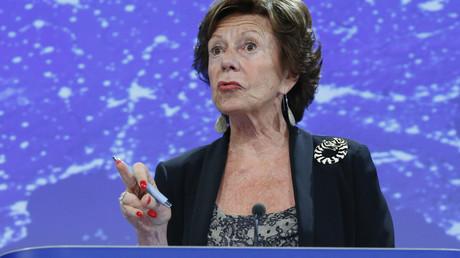 L'ancien commissaire européen Neelie Kroes