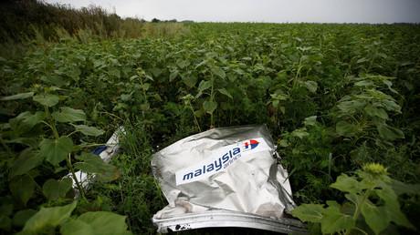 Un débris de l'avion du vol MH17, pris en photo le 18 juillet 2014