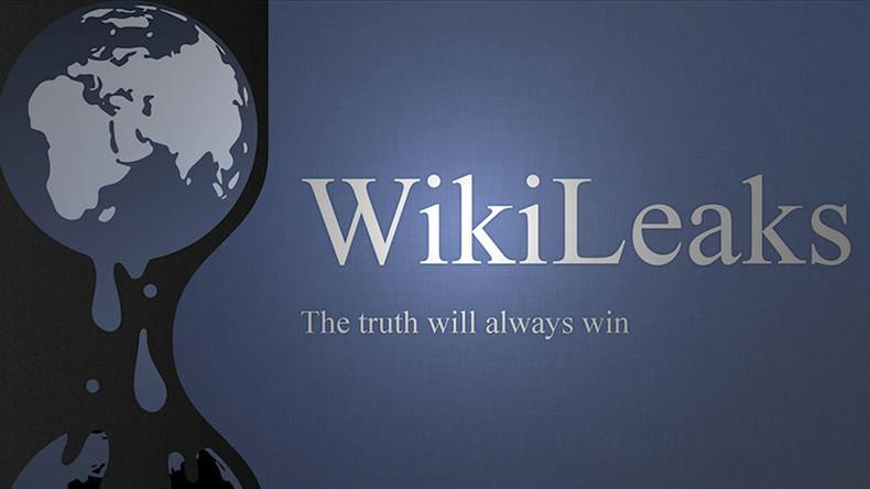 """Résultat de recherche d'images pour """"WikiLeaks"""""""