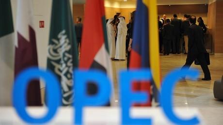 A quelques mois du sommet de l'OPEP d'Alger, le pays tente de redresser son économie en diminuant sa production de pétrole