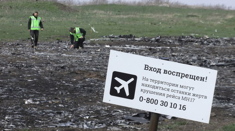 Le lieu du crash du MH17