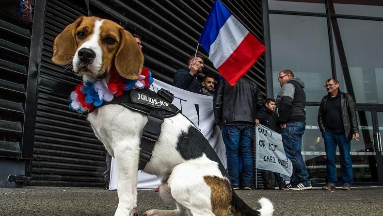 «Chez nous» : à Hénin-Beaumont, des militants frontistes protestent contre le film anti-FN