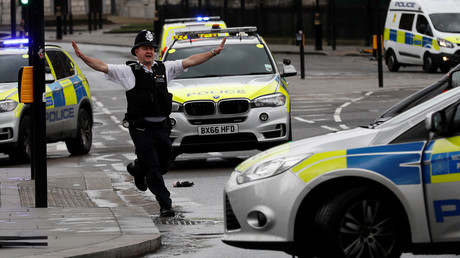 La capitale britannique a été frappée le 22 mars par une attaque qualifiée de terroriste par les autorités
