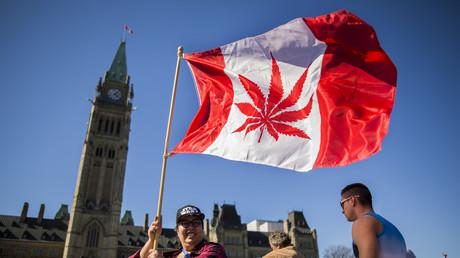 Le Canada emboîterait le pas à l'Uruguay et à certains Etats des Etats-Unis, qui ont déjà légalisé le cannabis