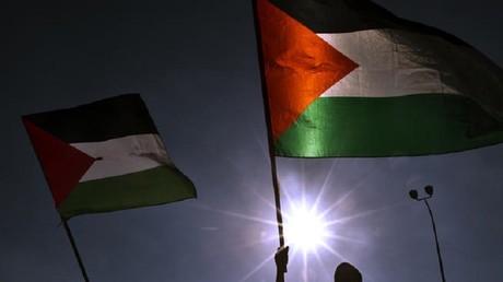 Le CRIF demande l'interdiction d'une manifestation pour la Palestine à Paris