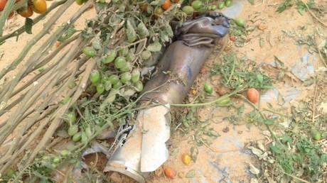 Daesh revendique le tir d'une roquette sur Israël depuis le Sinaï égyptien