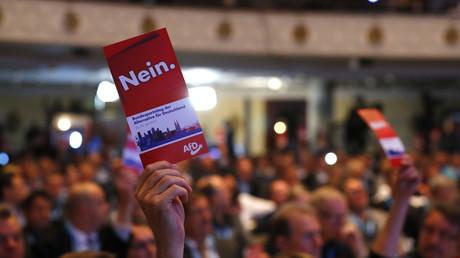 Le congrès de l'Afd à Cologne