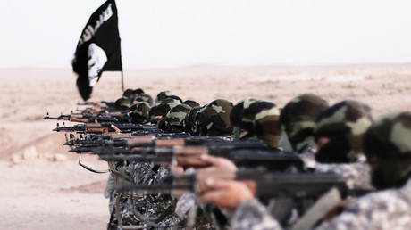 Des djihadistes de l'Etat islamique