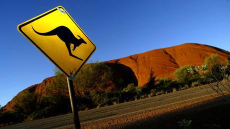 Un panneau routier en Australie : Attention aux kangourous