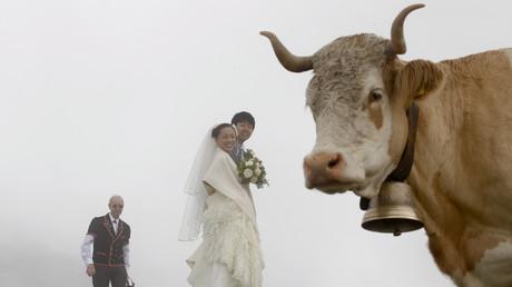 Les mariages binationaux désormais majoritaires en Suisse